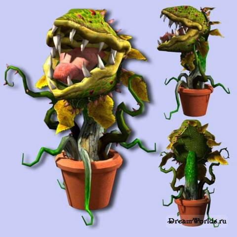 Хищное растение в тата