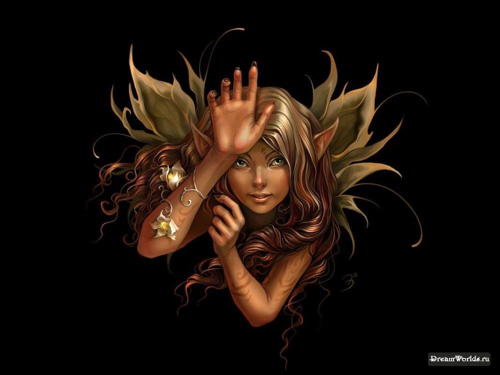Эльфы феи