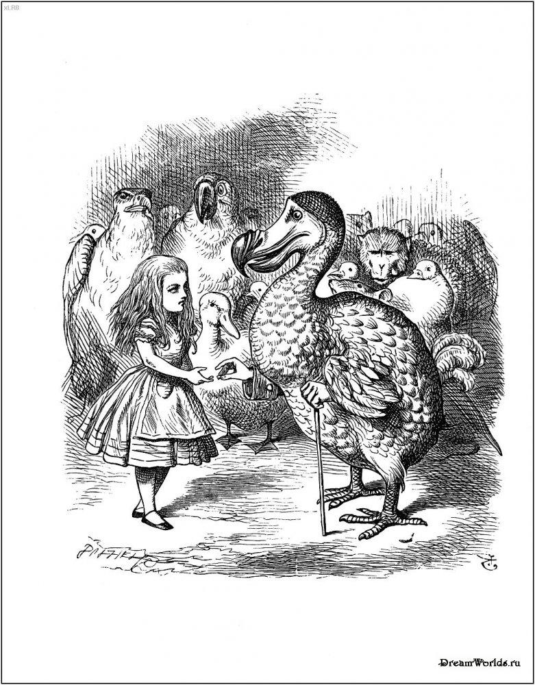 Иллюстрации художника angel dominquez