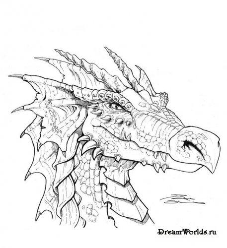 Драконы в карандаше часть 1 картинки