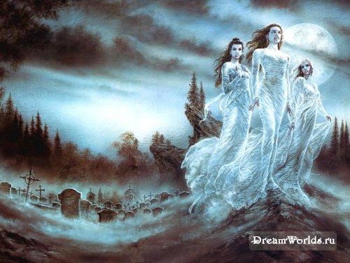 Семейство вампирус обыкновенус