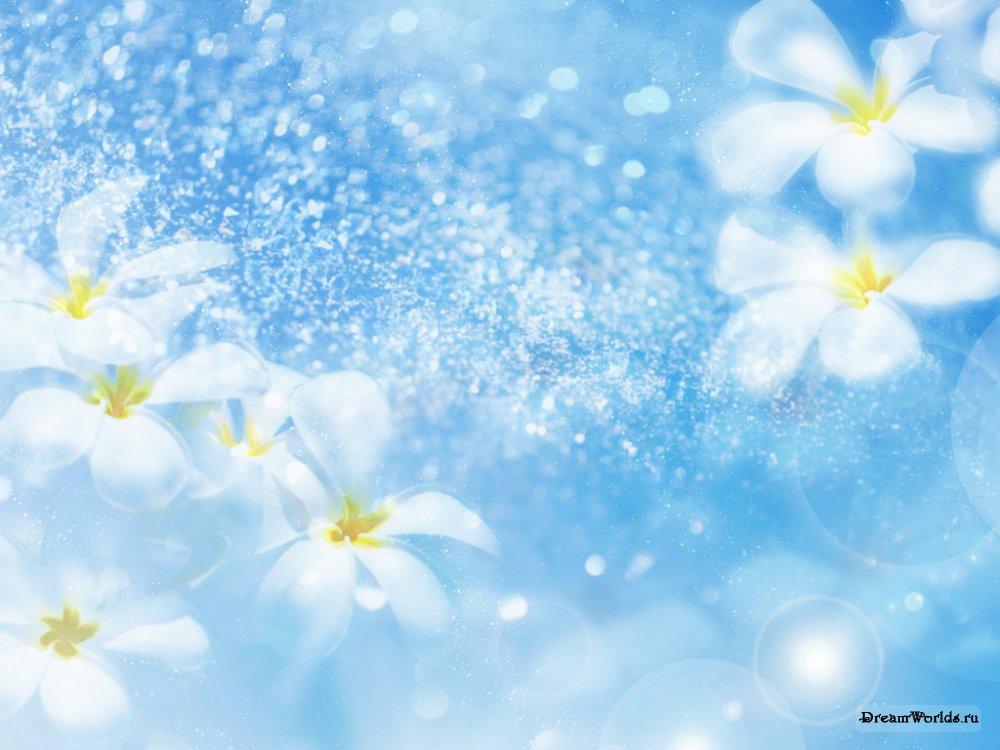Картинки со цветами 6