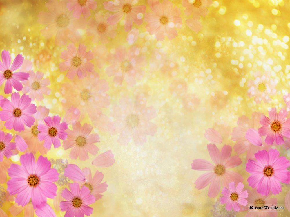 Картинки фон цветы 3