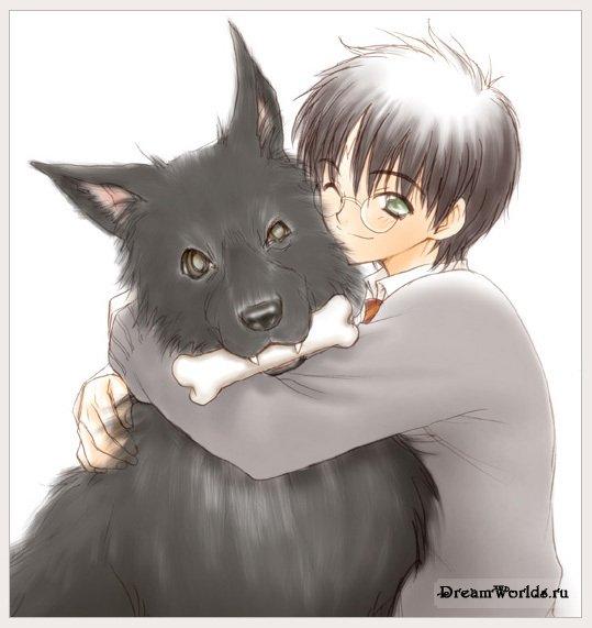 Harry Potter anime [Megapost] 1217933348_7993419