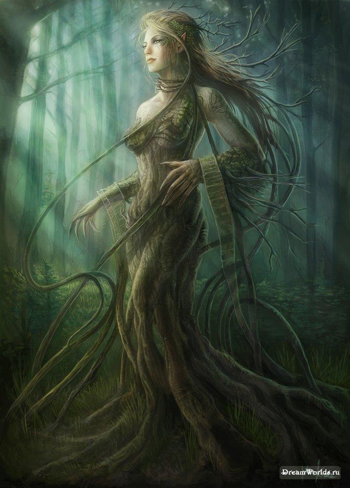 иной души с духом дерева