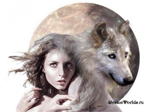 Волкки дикие и свободные часть 4