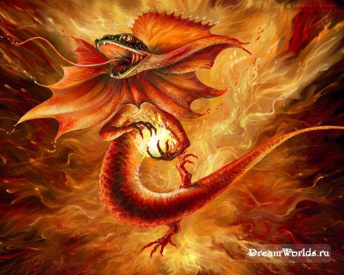 http://dreamworlds.ru/uploads/posts/2008-09/thumbs/1222787998_20060324_song_wallpapers_ru_ognennaya_salamandra_1.jpg