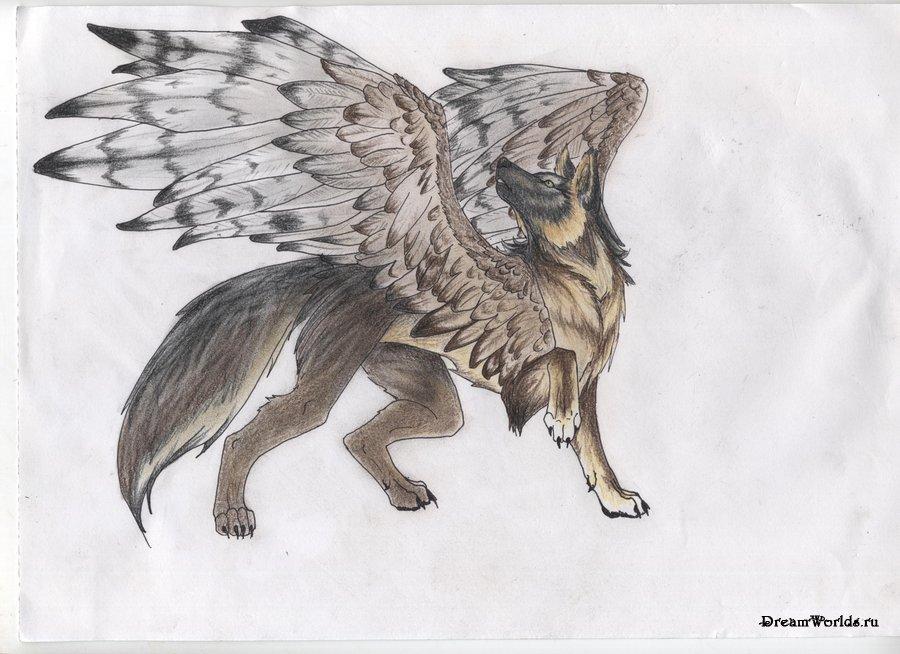 Крылатый мир фэнтези (30 image)