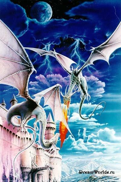 Dragons (14 image)