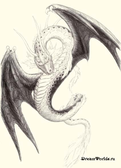 Картинки нарисованные карандашом драконы страшные