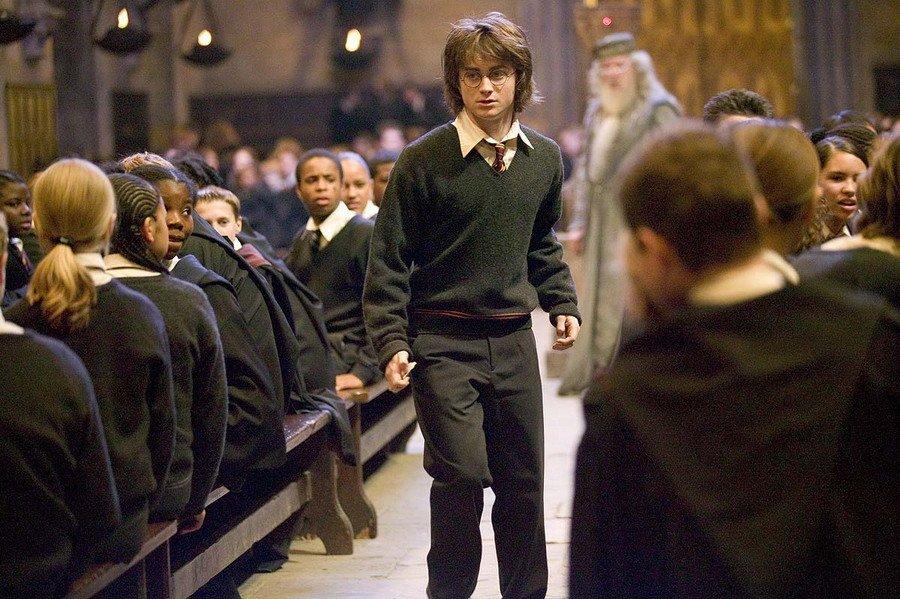 - Harry potter et la coupe de feu cedric diggory ...