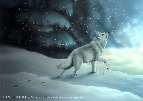 http://dreamworlds.ru/uploads/posts/2008-12/1230224648_1226411748_winterdream_by_khaosdog.jpg