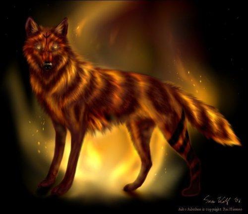 http://dreamworlds.ru/uploads/posts/2008-12/thumbs/1229698874_aim_for_the_burning_sun_by_snowwolfmystic.jpg