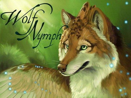 Другие новости по теме волки волки