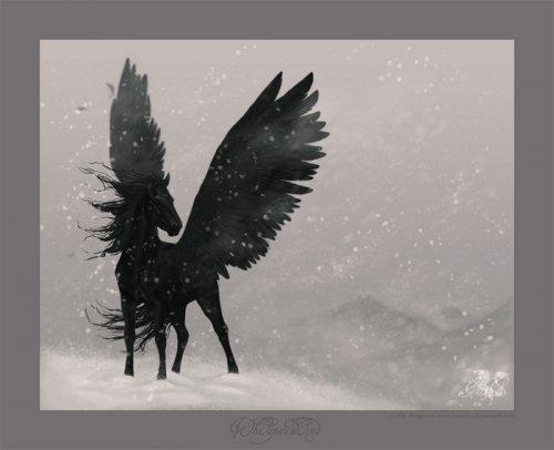 Для тех кто видит и любит лошадей только свободными, бегущими по бескрайним просторам, где никогда не будет человека...