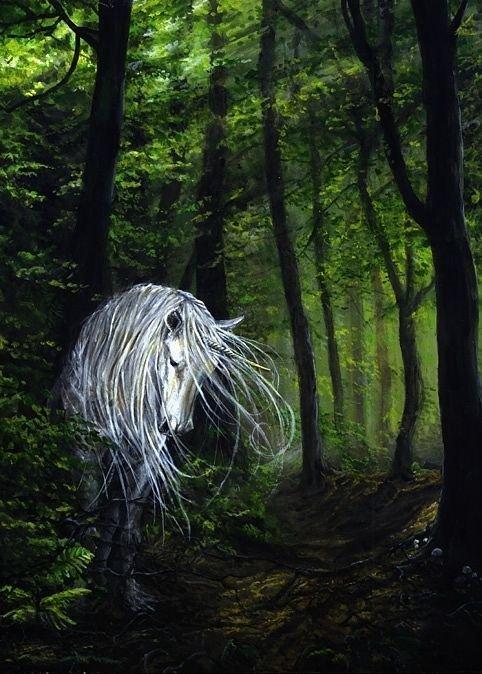 http://dreamworlds.ru/uploads/posts/2009-03/1237099875_unicorn_woods.jpg