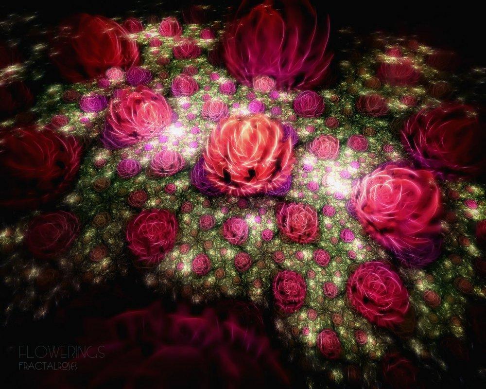 Супер цветы картинки 2