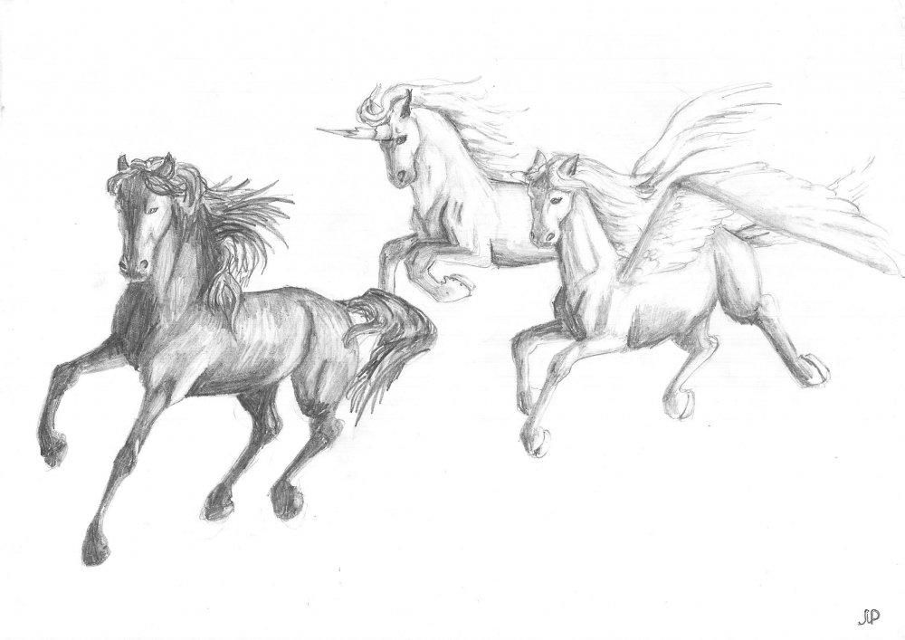 Рисуем ручкой лошадей