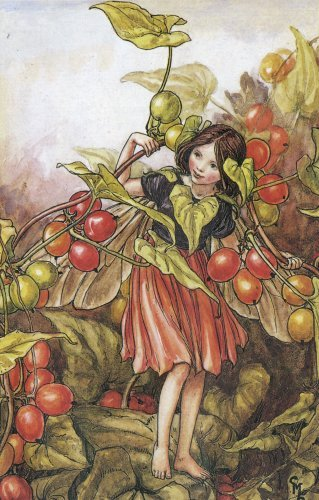 Сесиль Мэри Баркер (Cicely Mary Barker).Осень