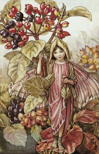 Сесиль Мэри Баркер (Cicely Mary Barker).Осень