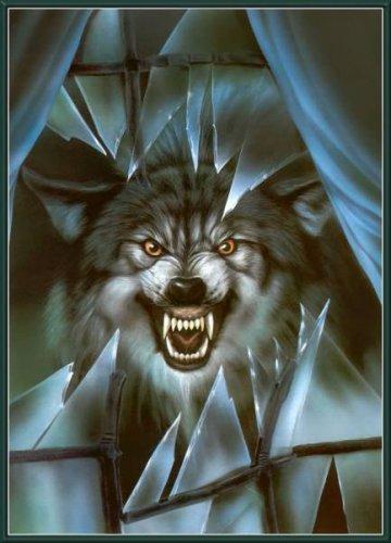 Магия волков
