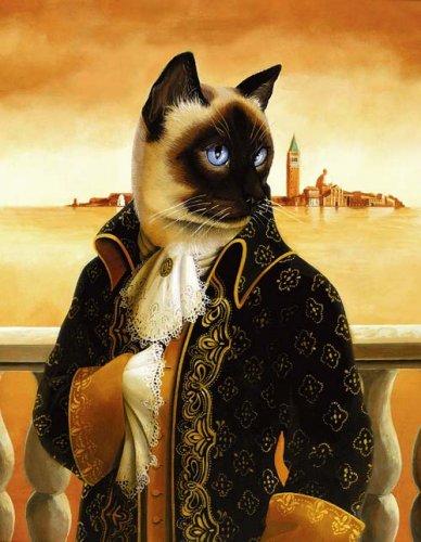 Кот и кошки. Аристократия