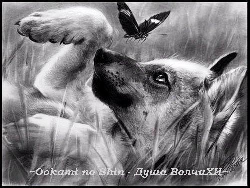 И немного из аниме волчий дождь хотя
