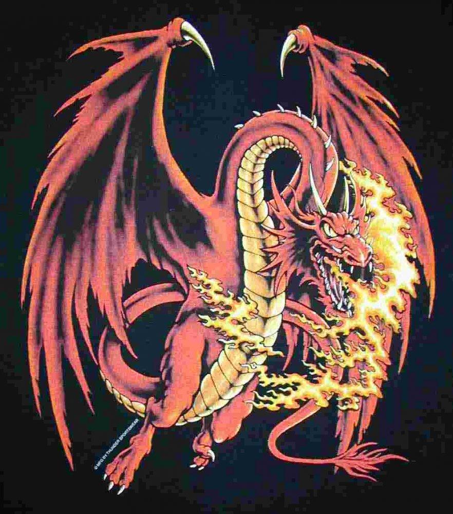 Angry dragon girl pics hentia comic