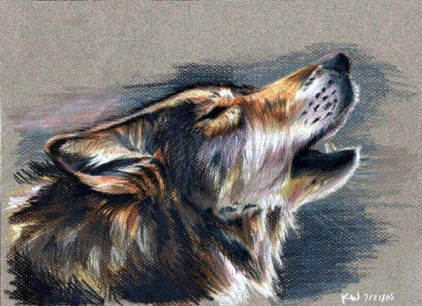 Как научится рисовать волком карандашом
