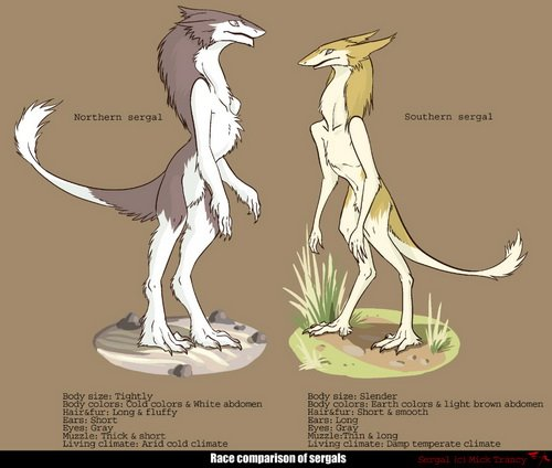 http://dreamworlds.ru/uploads/posts/2009-05/1243605696_sergal_comparison.jpg