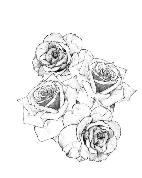 Цветы черно белые нарисованные картинки 1