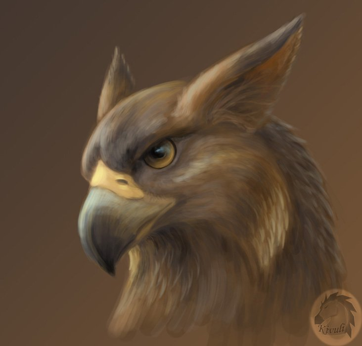 http://dreamworlds.ru/uploads/posts/2009-06/1244560299_gryphon_portrait_by_kivuli.jpg