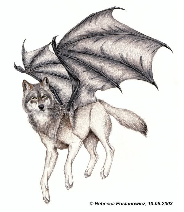 •Анкета• - Страница 3 1244729643_bat_winged_wolf_by_lioncrusher