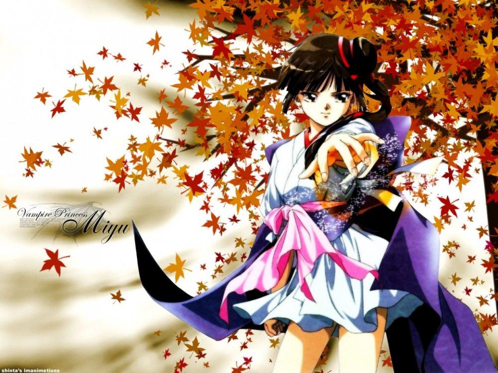 Смотреть онлайн и аниме принцесса мию