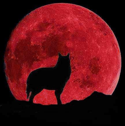 Re красная луна и другие космические
