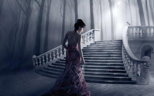 ступеньки, лес, туман, девушка, птица.