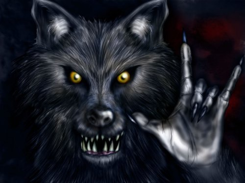 http://dreamworlds.ru/uploads/posts/2009-06/thumbs/1244120643_blackwerewolf.jpg