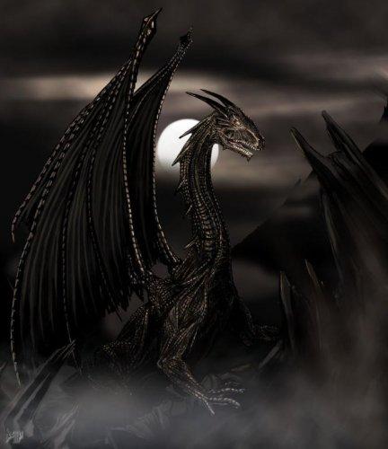 Новости по теме драконы драконы