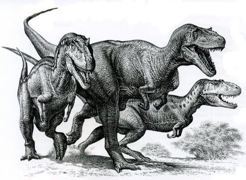 Животный мир :: Рисунки динозавров фото 6.