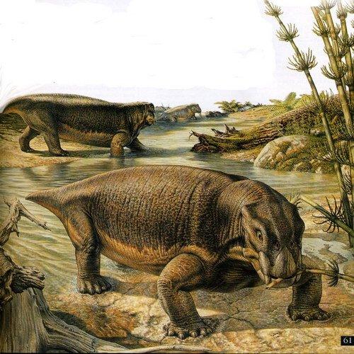 Животный мир :: Рисунки динозавров фото 3.