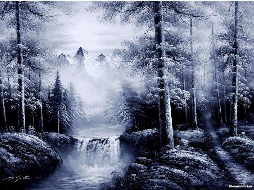 Прогулка по лесу.  Продолжение.