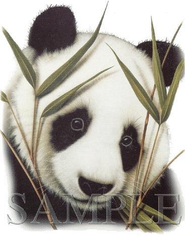 Большая панда (бамбуковый