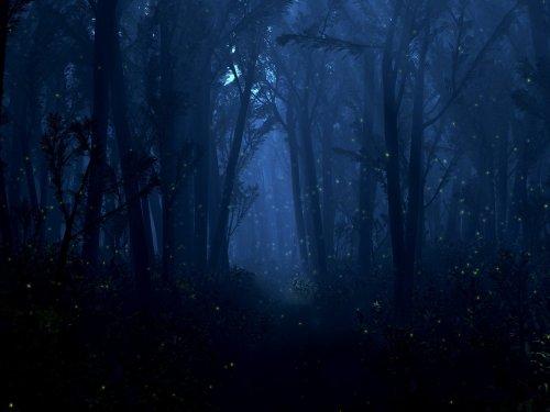 http://dreamworlds.ru/uploads/posts/2009-08/thumbs/1249730393_84796-jugra.jpg
