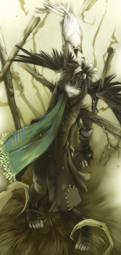 http://dreamworlds.ru/uploads/posts/2009-09/thumbs/1251899156_kingdom_of_crows___commission_by_shirotsuki.png