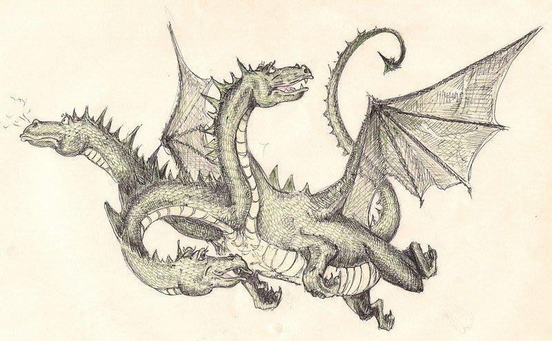 Драконы картинки карандашом красивые 8