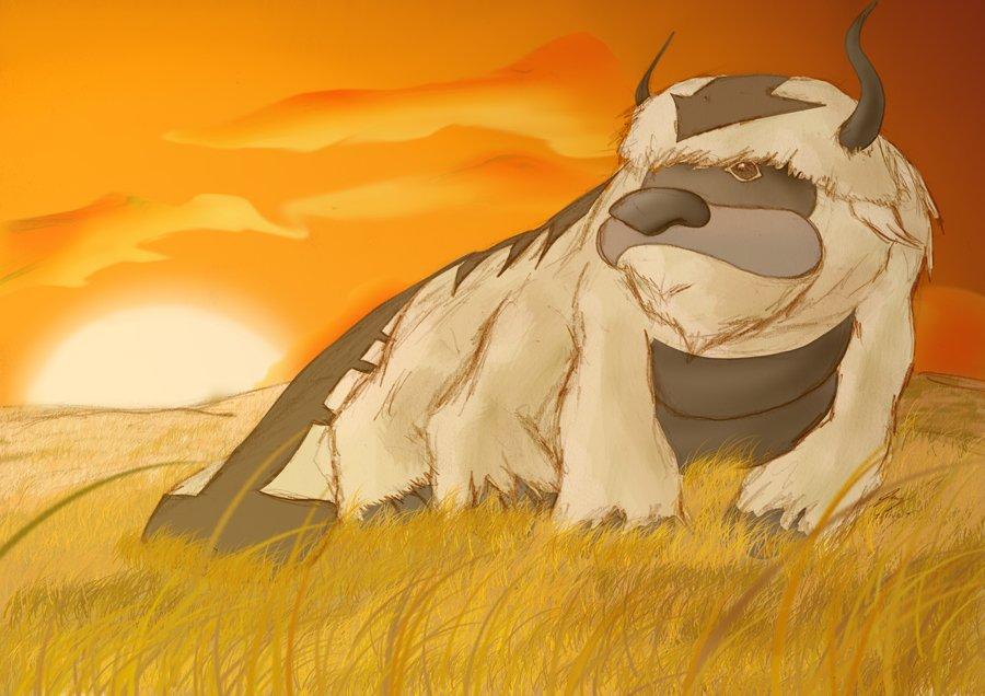 аватар легенда об аанге картинки аанге: