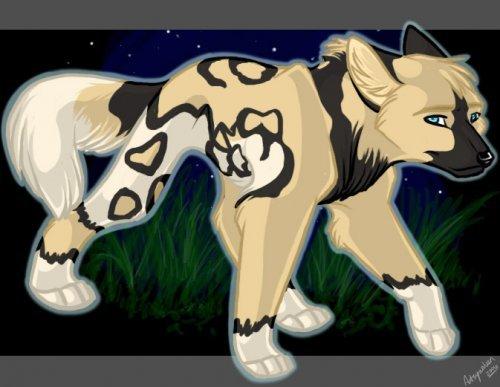 Волки 2 27 июня 2011 в 17 47 волки нет