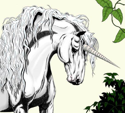 85. Другие новости по теме.  Анимированные гифки с единорогами, пегасами, лошадьми.  Пегасы и Единороги.