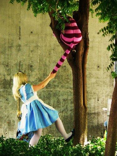http://dreamworlds.ru/uploads/posts/2009-12/thumbs/1261296508_alice_in_wonderland_by_yukivalentine.jpg