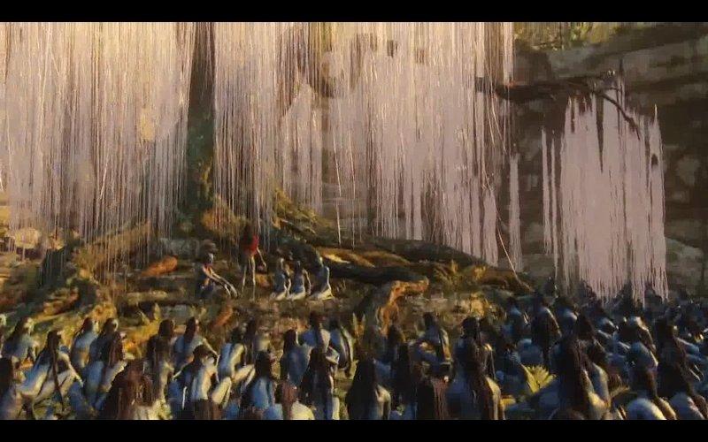 Смотрел фильм Аватар.  Вот почти так же , как в том фильме пандоряне относились к своему Дереву Душ.